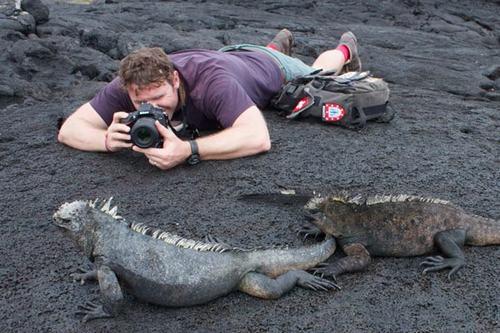 Cách chụp ảnh động vật hoang dã