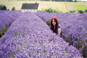 How_to_take_sharp_photos_NIK11.zone_1.lavender01b-300x200