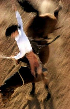 bronco-rider-6103-1395657702