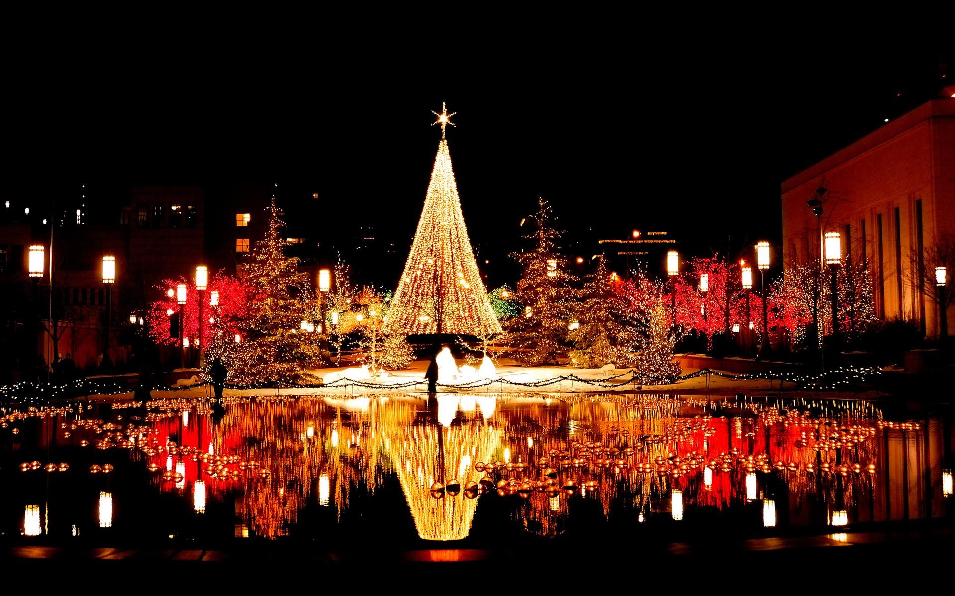 Mẹo chụp ảnh đẹp trong đêm Noel