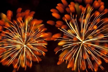 Firework-14-d6566