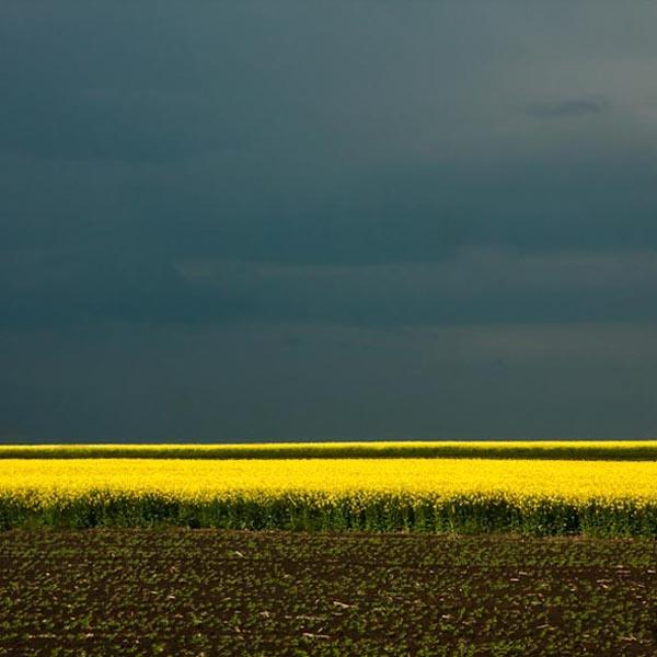 Nature-Minimal-by-Bigcbigc