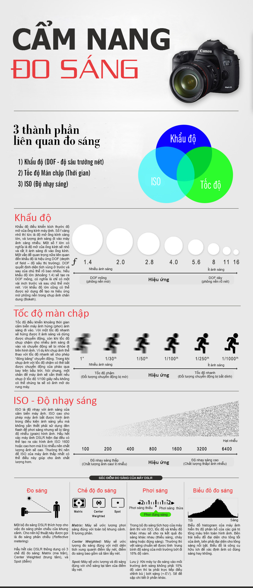 [Infographic] Cẩm nang đo sáng trong nhiếp ảnh