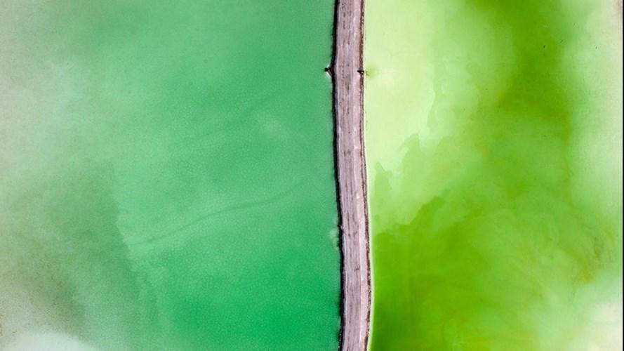 Con đường bị bao phủ bởi chất độc màu xanh lá cây ở cả hai bên.