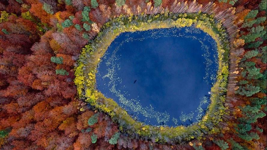 Với góc chụp từ trên cao cũng những mảng màu sắc tương phản rõ nét, bức tranh hồ nước với rừng cây đang thay lá trong mùa thu trở nên vô cùng ấn tượng, giống như một vùng đất ngoài hành tinh.