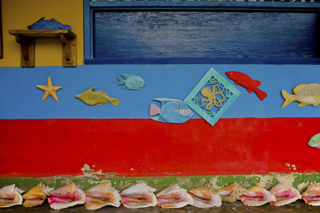 """Một bức tường trang trí trên nền màu cờ Colombia. Nhiếp ảnh gia chia sẻ: """"Thiên nhiên, lịch sử và con người đã tạo nên một bối cảnh chụp ảnh lý tưởng""""."""