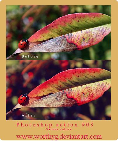 70-action-blend-mau-tu-dong-cho-photoshop-47