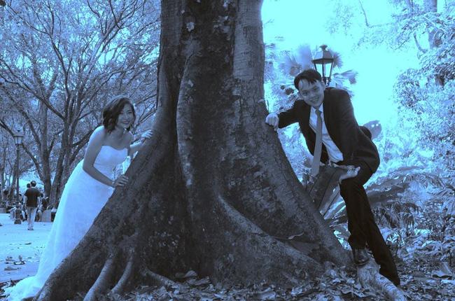 bo-anh-cuoi-xau-nhu-ma-cau-cua-cap-doi-nguoi-singapore_photoZone-com-vn-11 (2)