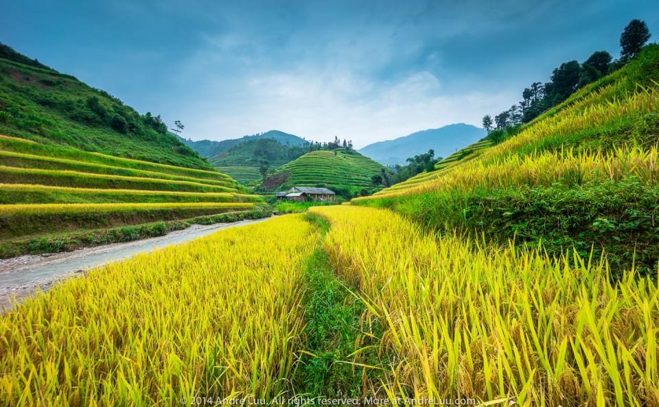 bo-cuc-phan-3-tien-canh-13-duong-dan-5-tieu-chuan-thu-hut-1-0_photozone-com-vn_-6