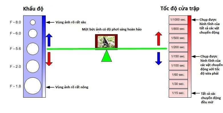 hieu-ve-cua-trap-va-khau-may-anh-bang-nguyen-ly-bap-benh_photoZone-com-vn 2