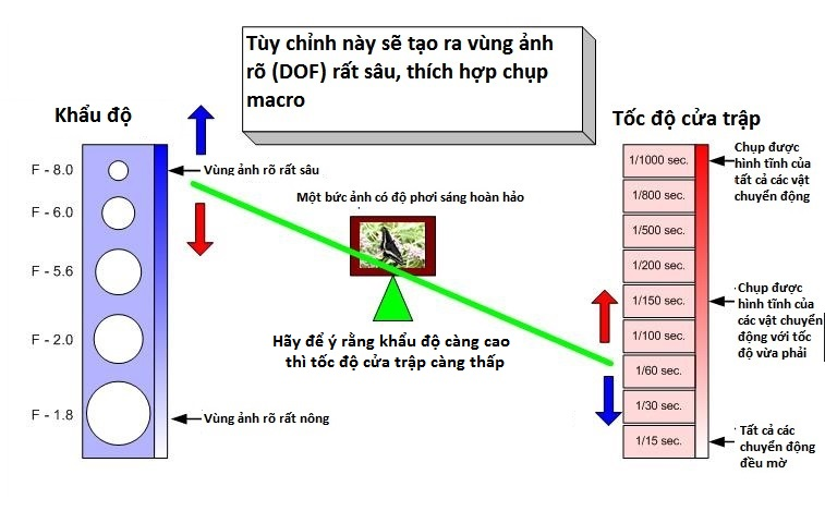 hieu-ve-cua-trap-va-khau-may-anh-bang-nguyen-ly-bap-benh_photoZone-com-vn 3