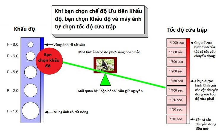 hieu-ve-cua-trap-va-khau-may-anh-bang-nguyen-ly-bap-benh_photoZone-com-vn 5