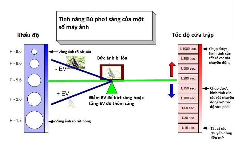 hieu-ve-cua-trap-va-khau-may-anh-bang-nguyen-ly-bap-benh_photoZone-com-vn 8