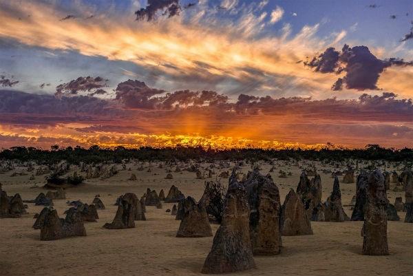 Khung cảnh ở The Pinnacles, một điểm hút khách du lịch ở Tây Australia.