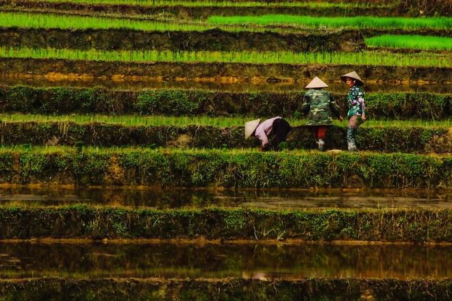 viet-nam-trong-mat-nguoi-tho-nhi-ky_photoZone-com-vn 6