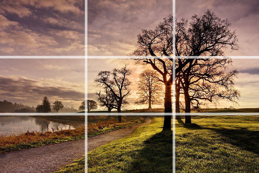 19 Kỹ thuật bố cục nhiếp ảnh từ nhiếp ảnh gia chuyên nghiệp (Phần 1)