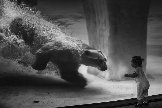 Nhiếp ảnh gia Latvia đoạt 5 huy chương cuộc thi ảnh nghệ thuật ở VN