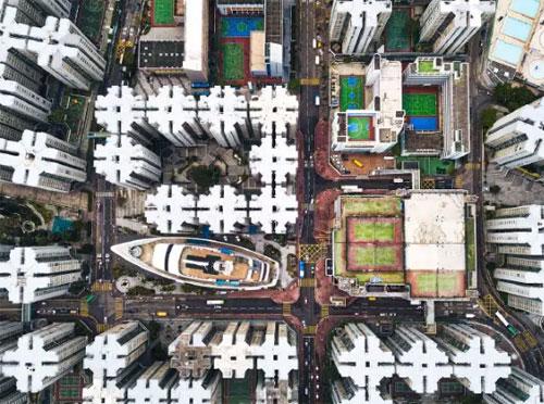 Cú lừa phía sau bức hình của nhiếp ảnh gia ở Hong Kong