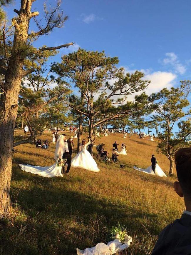 """Bức ảnh ấn tượng nhất cuối tuần: Đà Lạt """"1 mét vuông 10 đôi chụp ảnh cưới"""" và phản ứng hài hước của dân mạng"""